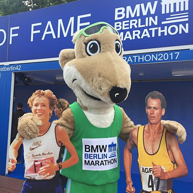2017 Berlin Marathon BMW Berlin Marathon  